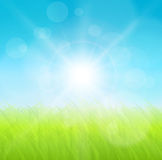 Abstract background. Green grass and sun,  illustration Royalty Free Stock Photography