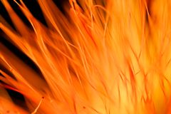Abstract background. Abstract shot of out of focus part of flower - looks like flames stock image