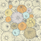 Abstract Background. With sea urchins Stock Images