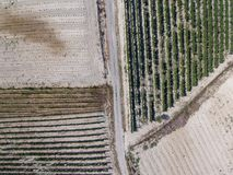 Abstract background. Aerial photography of a field Royalty Free Stock Photo