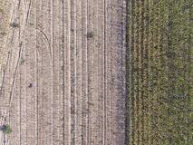 Abstract background. Aerial photography of a field Royalty Free Stock Image