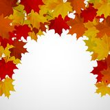 Abstract background with autumn colorful leaves. Vector vector illustration