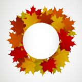 Abstract background with autumn colorful leaves. Vector stock illustration