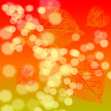 Abstract background with autumn leaf. Abstract background with blurry lights and autumn leaf vector illustration