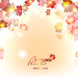 Abstract background of autumn leaf fall. Abstract background of autumn leaf fall, deadwood royalty free illustration