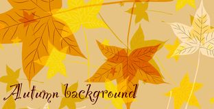 Abstract background of autumn leaves. Vector vector illustration