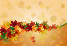 Abstract background with autumn leaves . Abstract background with colorful autumn leaves vector illustration