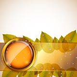 Abstract background with autumn leaves and glass Royalty Free Stock Images