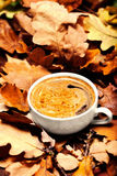 Abstract background with  autumn leaves and hot coffee cup. Ye Stock Photography