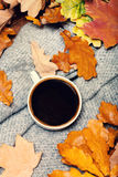 Abstract background with  autumn leaves and hot coffee cup. Ye Royalty Free Stock Images