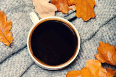 Abstract background with  autumn leaves and hot coffee cup. Ye Royalty Free Stock Photography