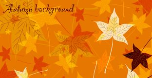 Abstract background of autumn leaves. Vector Stock Illustration