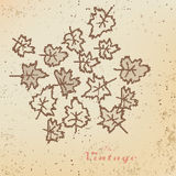 Abstract background of autumn leaves vintage style.  Royalty Free Stock Image