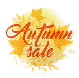 Abstract background for autumn sale. Abstract autumn background with yellow falling maple leaves Stock Photography