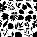 Abstract background of autumn. Autumn seamless pattern.Black set Stock Photo