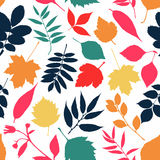 Abstract background of autumn. Autumn seamless pattern.Nature leaf pattern vector illustration