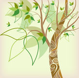 Abstract background autumn tree. With green leaves stock illustration