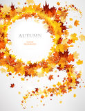 Abstract background with autumnal leaves. With space for text Royalty Free Stock Photos