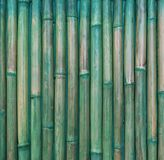 Abstract background from bamboo pattern wall with green painted. Retro and vintage. Picture for add text message. Backdrop for design art work stock image