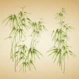 Abstract background with bamboo Royalty Free Stock Photography