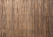 Abstract background - bamboo wall texture Royalty Free Stock Photography