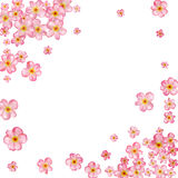 Abstract background with beautiful pink cherry blossom. Vector illustration on a white background vector illustration