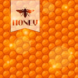 Abstract background with bee honeycombs and honey.  Vector Illustration