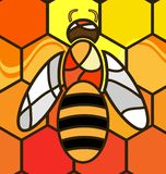 Abstract background bee. Multy-color background variation: abstract image bee consisting of lines stock illustration