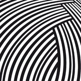 Abstract background. Black and white curve lines Royalty Free Stock Image