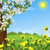 Abstract background with a blossoming tree. Vector illustration stock illustration
