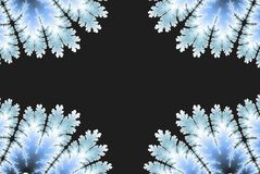 Abstract background of blue ice or leaf with a copy space. Abstract background of blue ice or leaf royalty free illustration