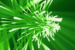 Abstract background with blurred magic neon green lines. 3d rendering Royalty Free Stock Image
