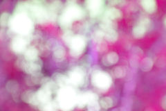 Abstract background bokeh circles for  background. The abstract background of natural light bokeh Royalty Free Stock Photo