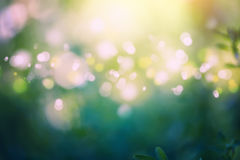 Abstract background with bokeh lights. Summer abstract background with bokeh lights stock illustration