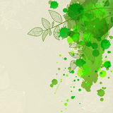Abstract background with branches and blots. Abstract eco background with branch, leaf and blots Royalty Free Stock Images