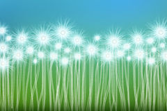 Abstract background. Abstract, bright background with colorful flower Stock Photos
