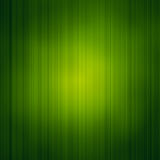 Abstract background with bright green grass texture. Spot light in the Center. The theme of health and the environment vector illustration