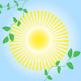 The Abstract background bright sun. The Solar morning Royalty Free Stock Photo
