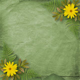 Abstract background with bunch of flower Stock Photography