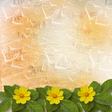 Abstract background with bunch of flower Stock Images