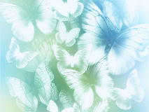 Abstract background with butterflies. Abstract light blue and green background with white butterflies vector illustration