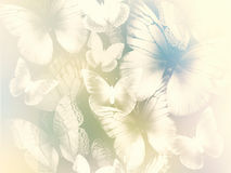 Abstract background with butterflies Stock Images