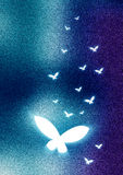 Abstract Background butterfly. Grainy abstract background with glowing butterflies Stock Images