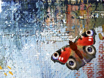Abstract background with butterfly. Oil paints on canvas stock illustration