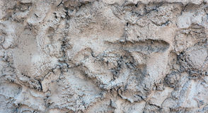Abstract background. cement. Stock Photography