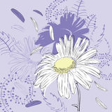 Abstract background with chamomile. Abstract purple background with camomile vector illustration