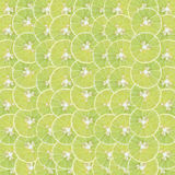 Abstract background with citrus-fruit of lemon slices Royalty Free Stock Photography