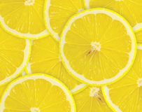 Abstract background with citrus-fruit of lemon slices. Close-up. Royalty Free Stock Photo