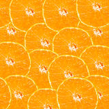 Abstract background with citrus-fruit of orange slices. Royalty Free Stock Photo