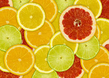 Abstract background with citrus-fruits slices Stock Photography